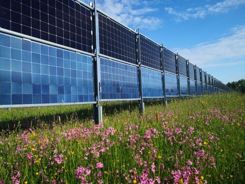 Photovoltaik-Blumenwiese